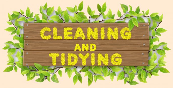 Cleaning And Tidying