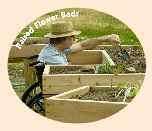 the image shows a Man in wheelchair planting in raised flower beds