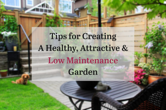 Tips to create a healthy attractive low maintenance for Creating a low maintenance garden